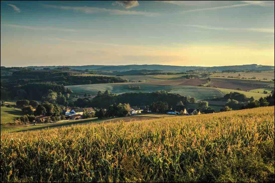 Kompostplatz in Herschweiler-Pettersheim öffnet wieder!