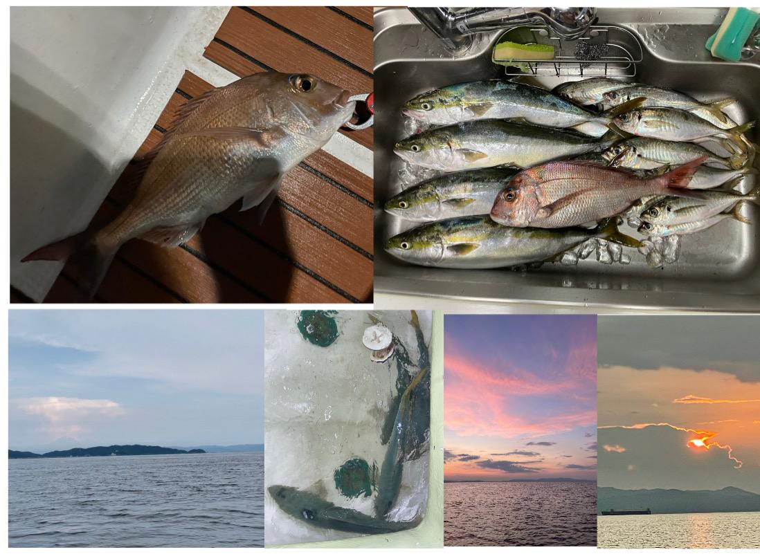 体の為の魚生活( *´艸`)