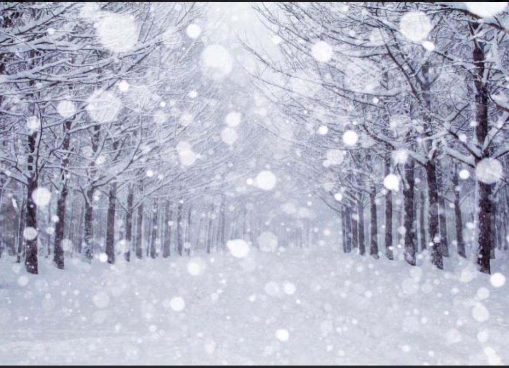 初雪・初冠雪⛄