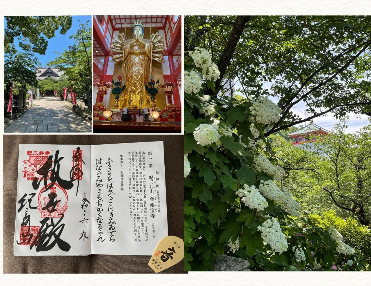 紀三井寺( *´艸`)和歌山ラーメン