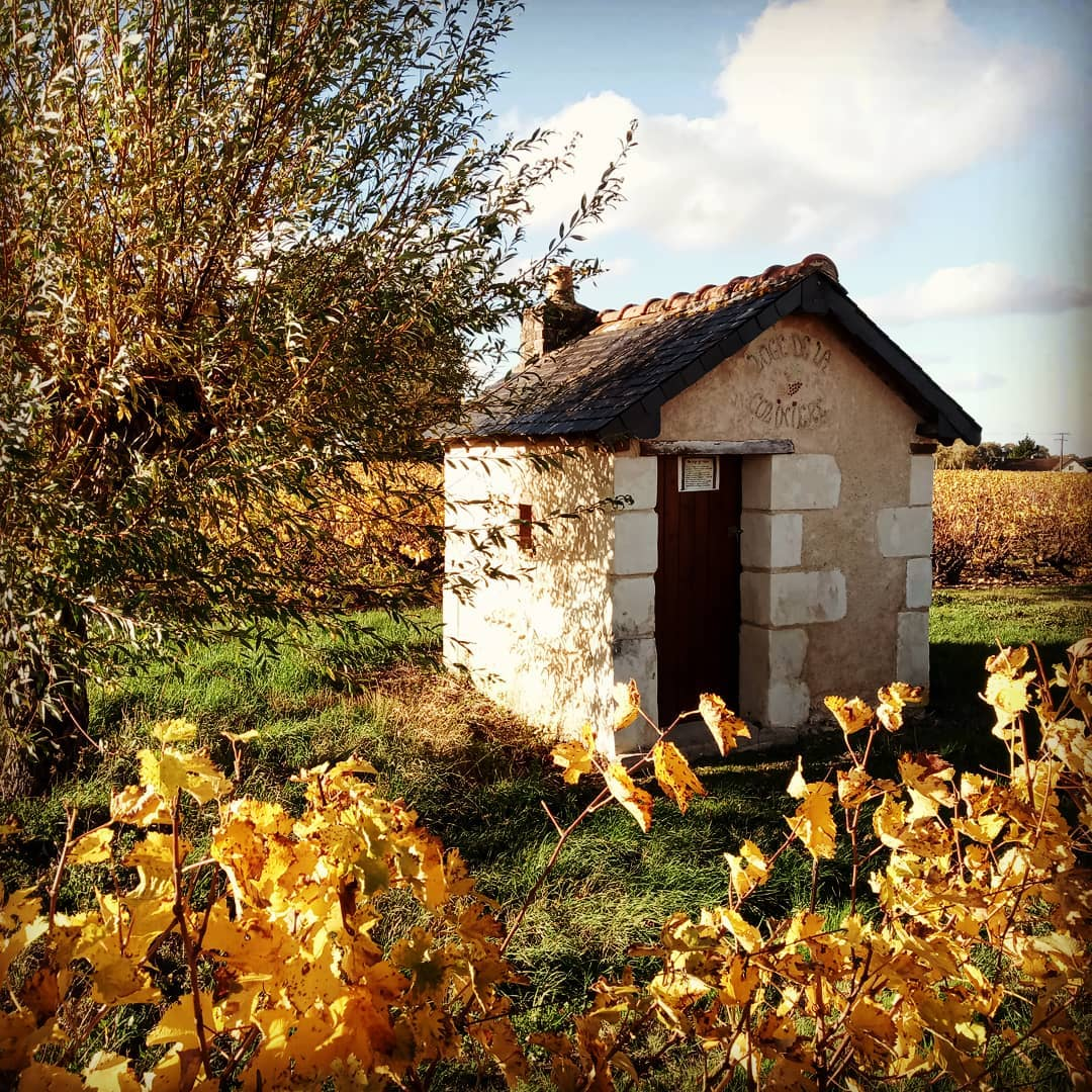 Wine heritage: vineyard lodges in the Loire Valley