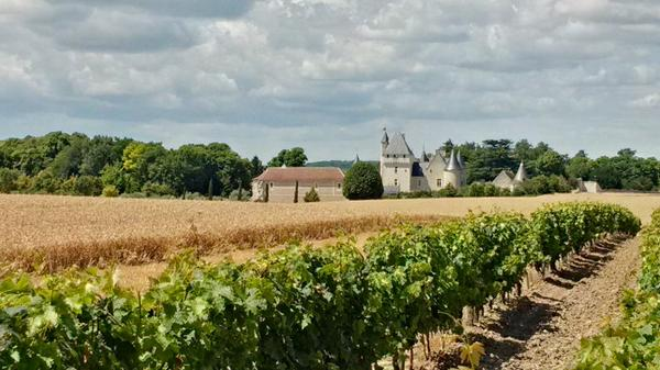 chateau-rivau-Loire-Valley-Touraine-Chinon-gardens-fairy-tales-vineyards-wines