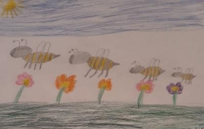 Bienenflug von Sinziana , im Lockdown