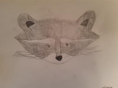 Waschbär-Zeichnung von Johanna H., Malakademie Kids