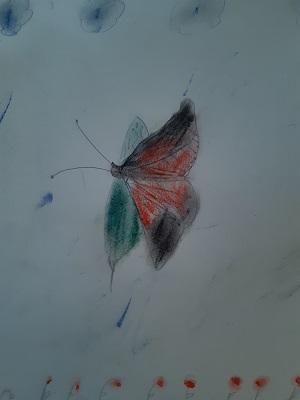 Schmetterling von Negah, Malakademie Kids