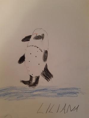 Pinguin von Liliane, Malakademie Kids