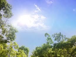 朝、日光を浴びること