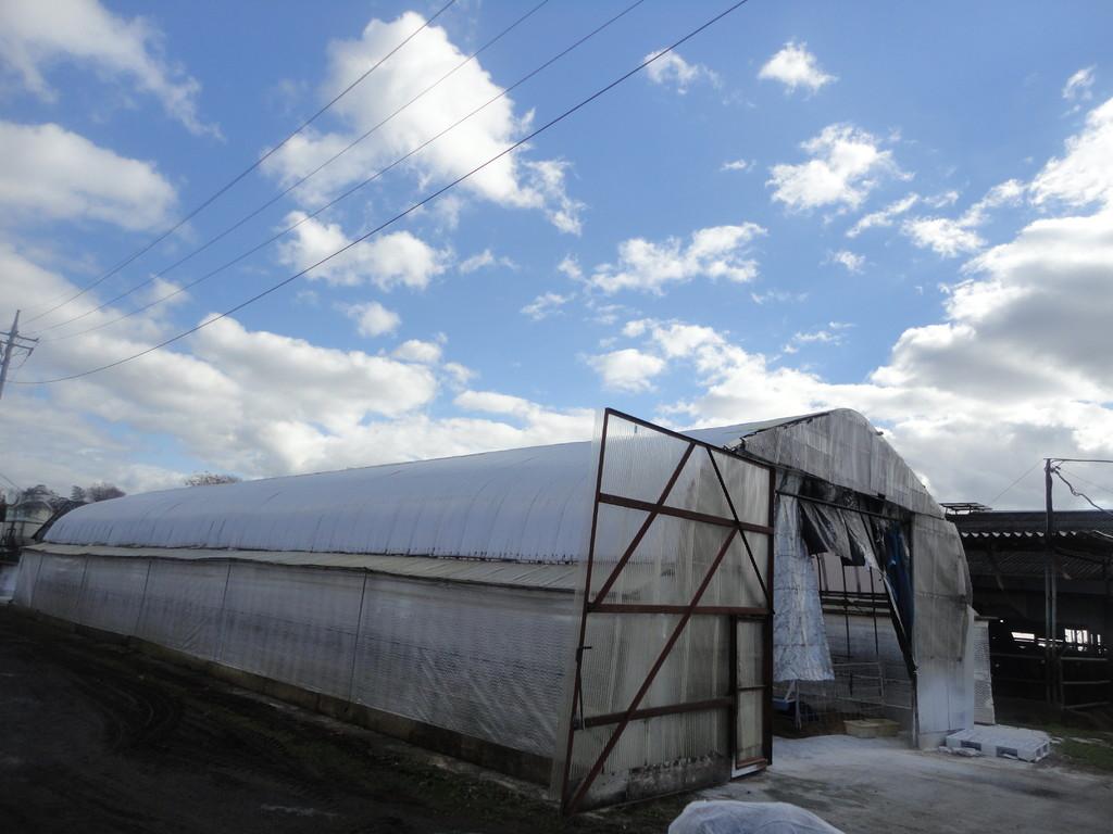 晴れ渡る空と牧場 とても空気が澄んでいました
