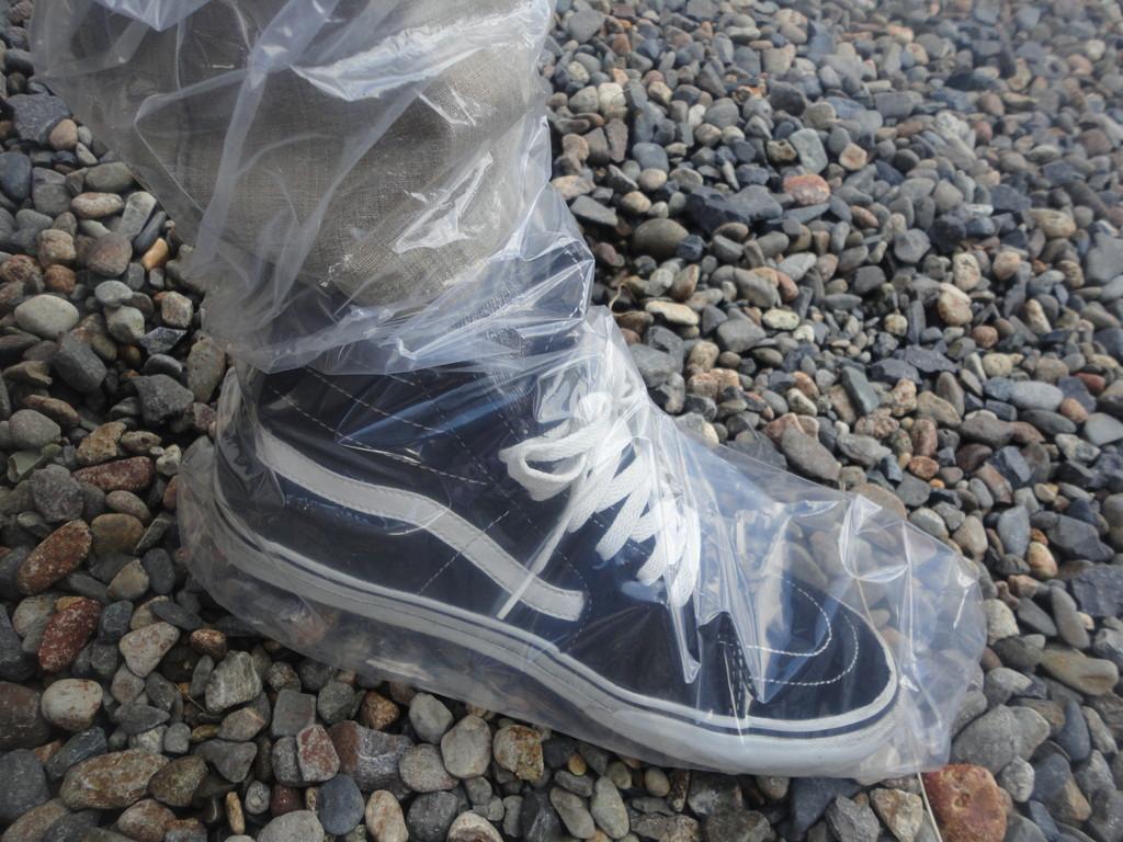 いよいよ楽しみにしてた農場見学 靴をビニールで覆い衛生面での準備も万全です