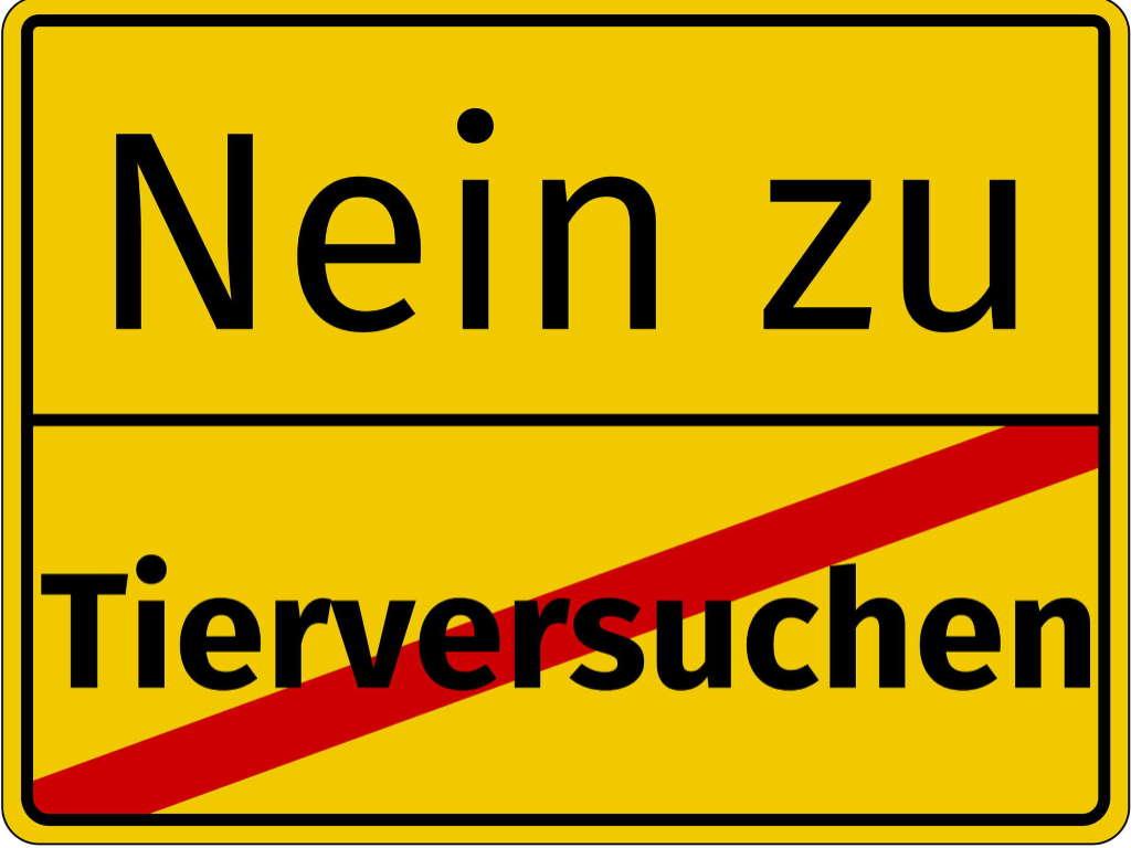 Briefaktion an politische EntscheidungsträgerInnen im Land Berlin