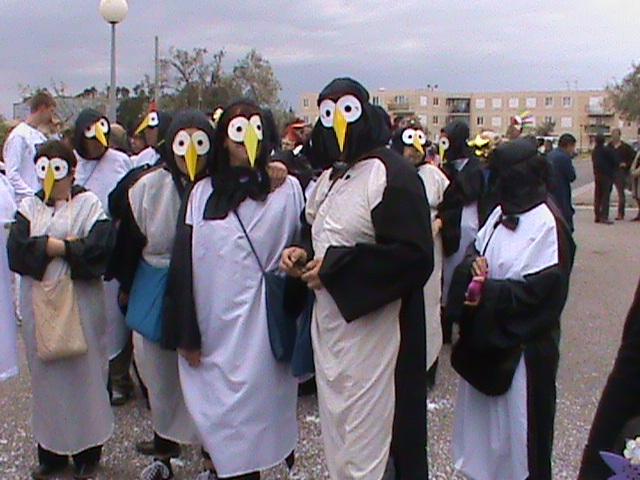 Carnaval Saint Estève 2011