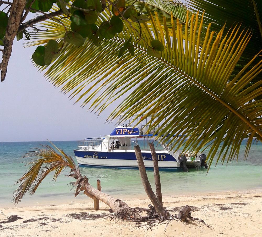 Strand mit Boot und Palme