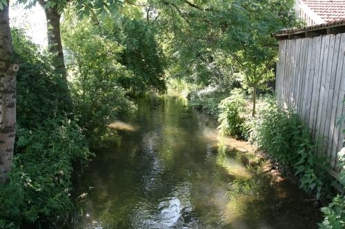 An einem Sommertag im Juni - ruhig und beschaulich fließt die Mindel durch Bronnen