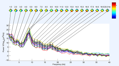 Analyse - spectres