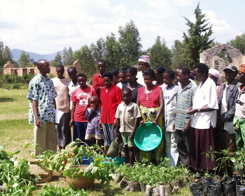 Verteilung von Obstbaumpflanzen