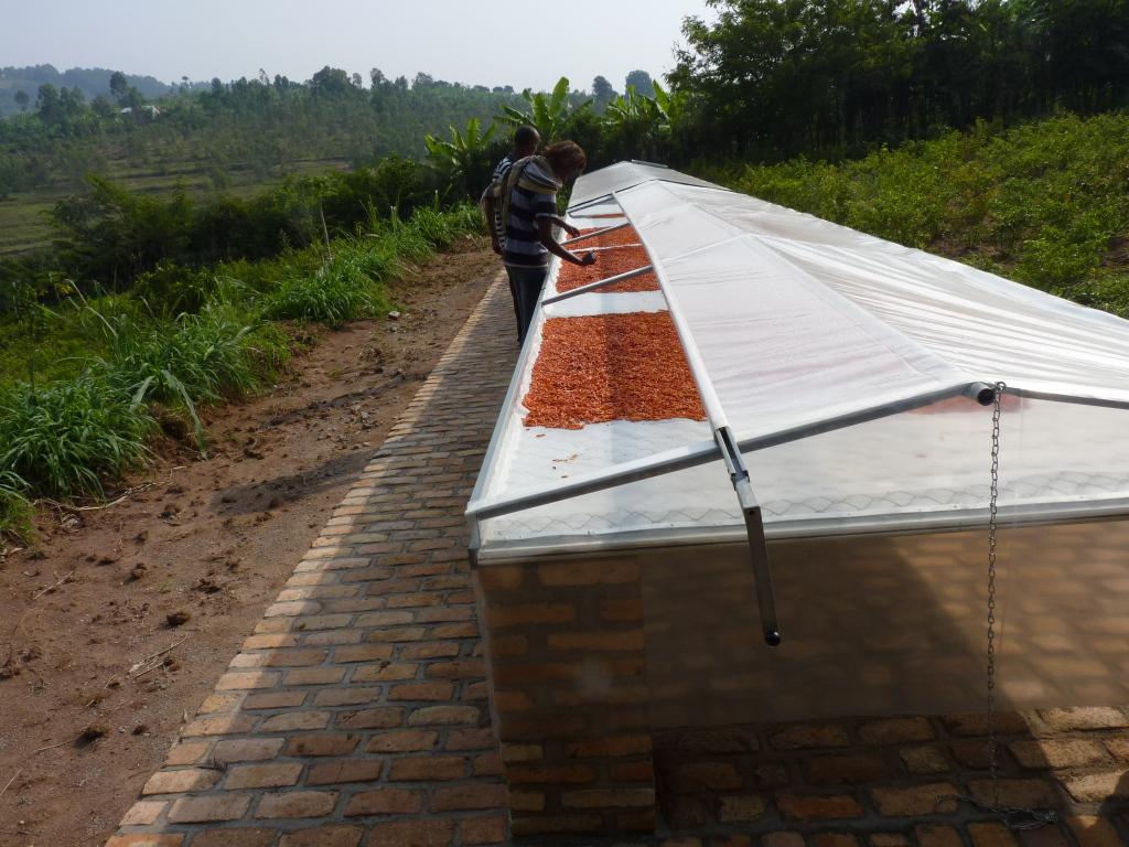 Pili-Pili, solarbetriebene Trockenanlage