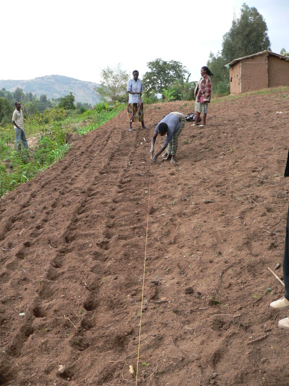 Beratung beim Sojaanbau