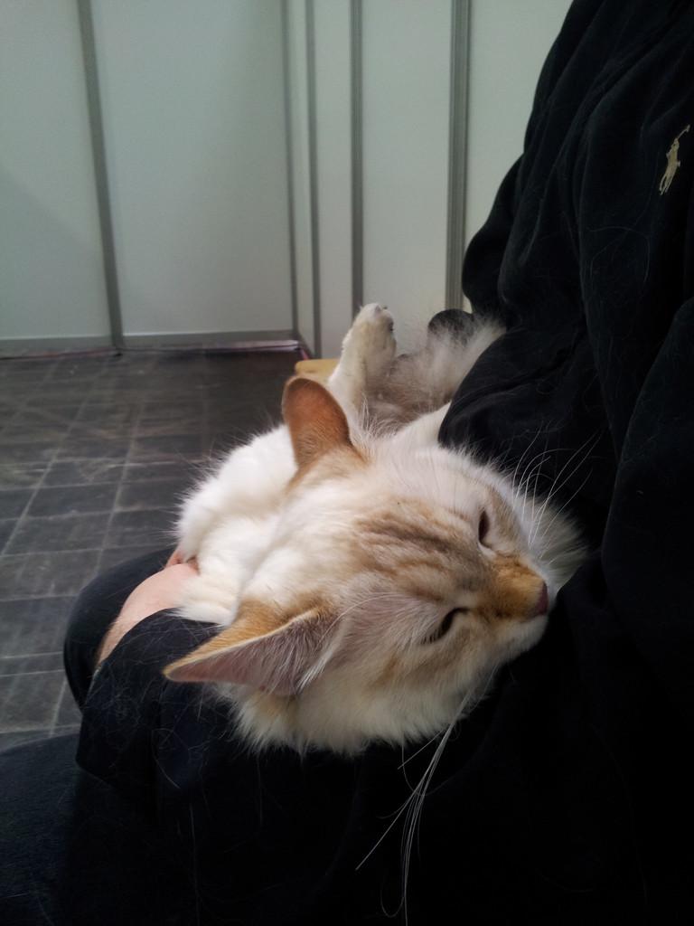 Schönsein macht sehr müde!!!