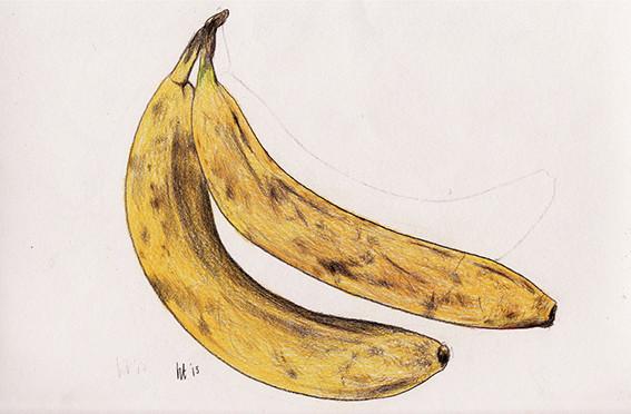 寄り添いバナナ A Couple of Bananas 379 mm x 270 mm color pencils 2013 Ⓒ Hanae Tanazawa
