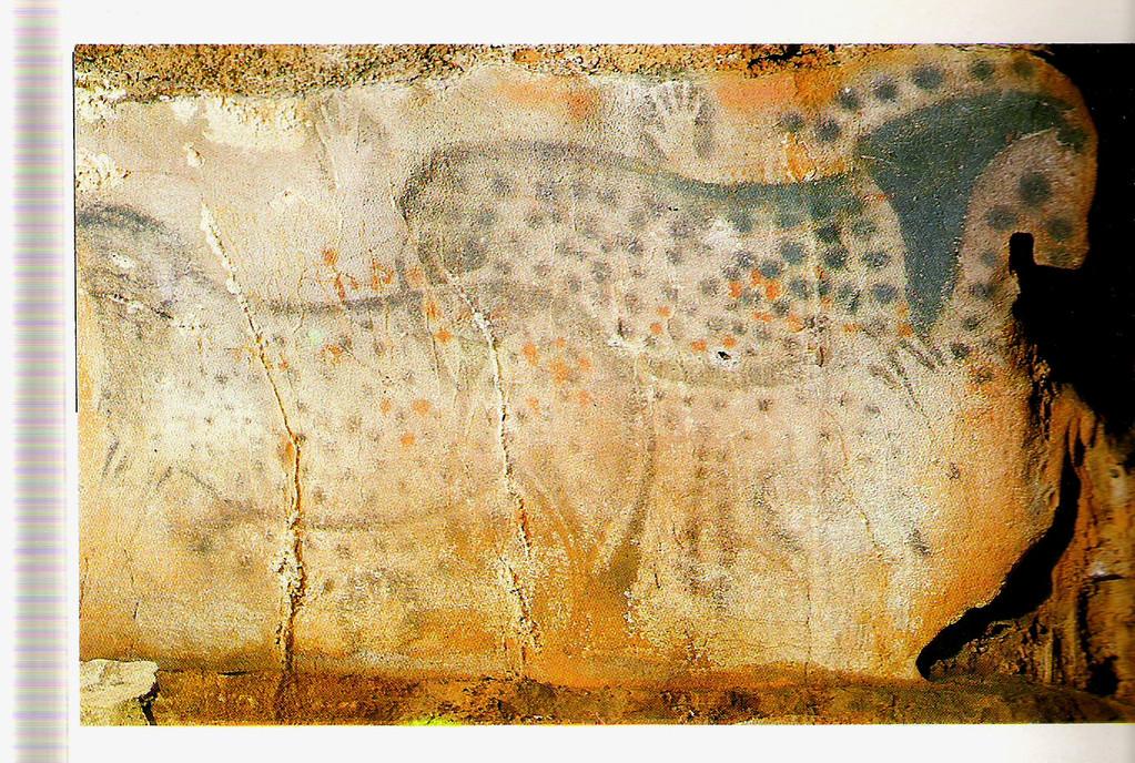 Chevaux pommelés à la grotte de Pech-Merle (Cabrerets, Lot)