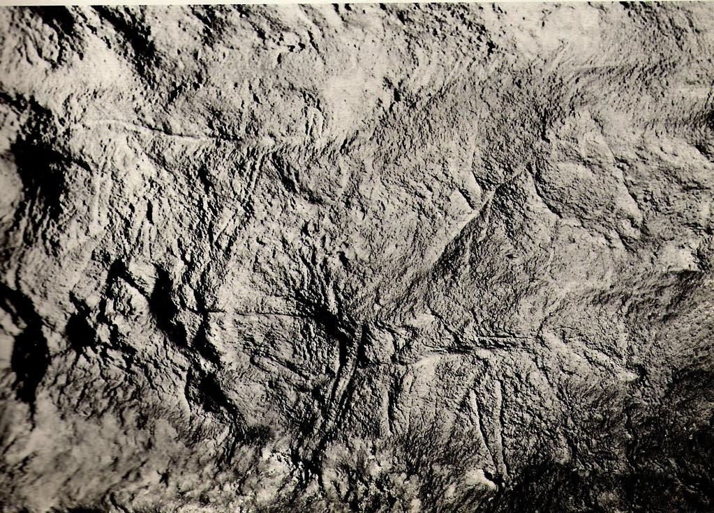 Cheval gravé, grotte ornée des Combarelles (Dordogne)