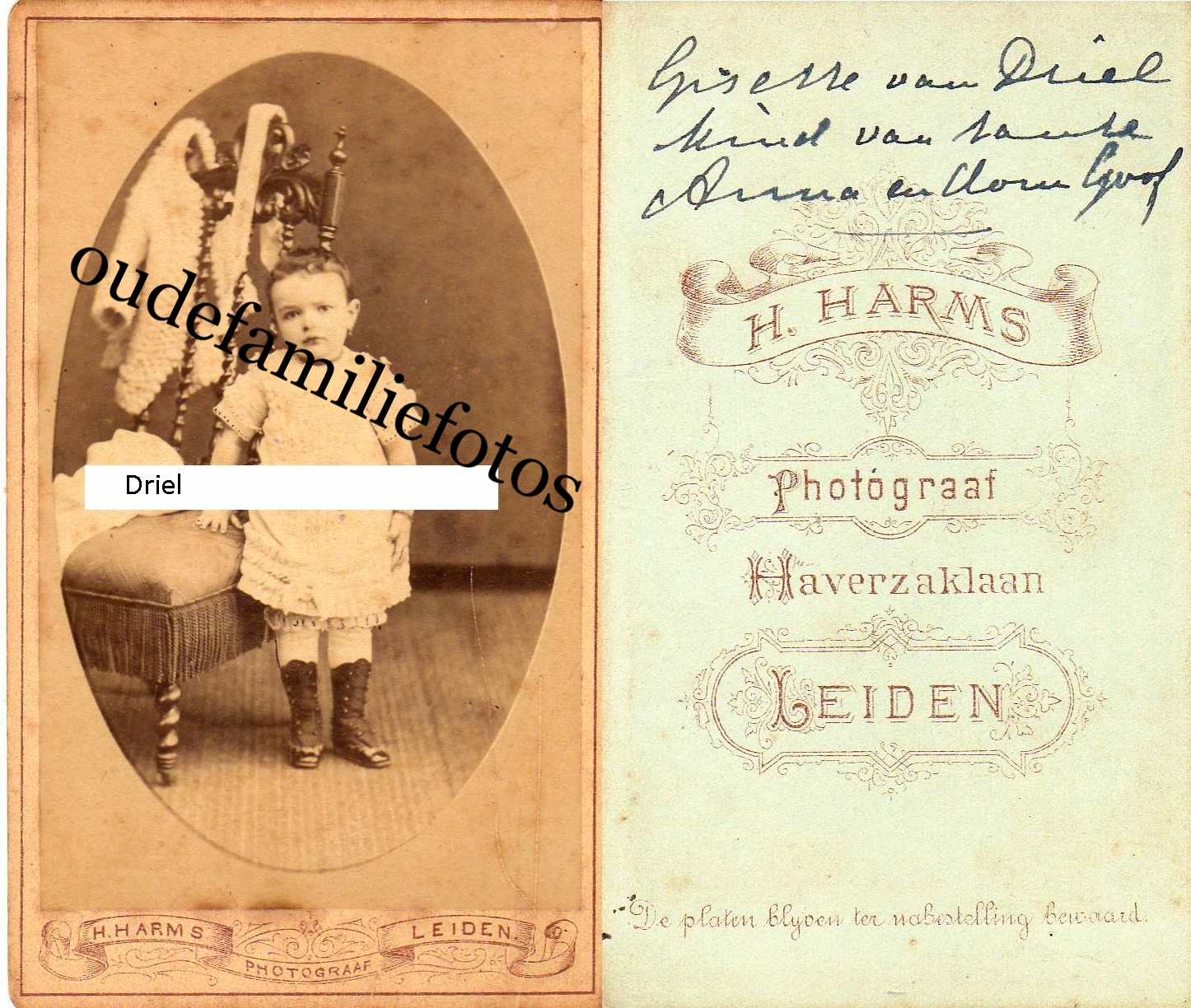 Driel, van, Gisette geb. 29-8-1878 Leiden ovl. 1-1-1883 Leiden Ouders Govert en Anna Maria Segers. € 2,00