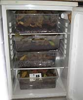 Kühlschrank mit Laubboxen