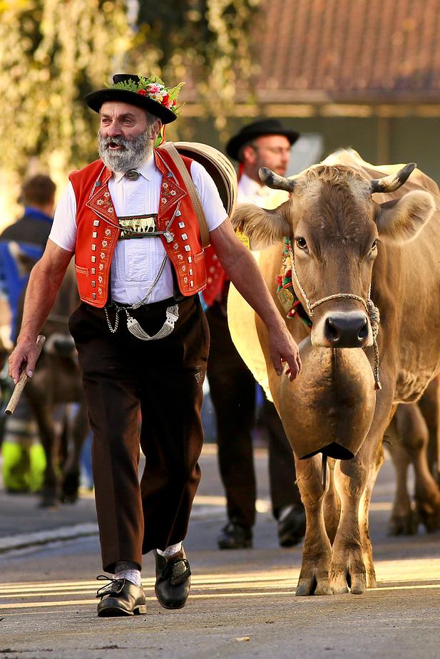 foto-aldente.net - Ebnat Kappel  - Viehschau - Fotografie - Tierfotografie