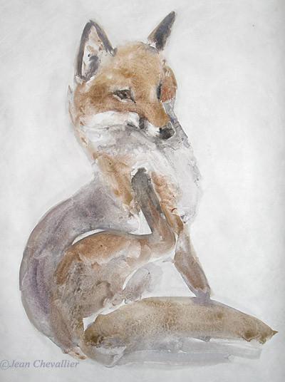 renard, aquarelle Jean Chevallier 45X80 cm