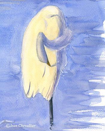 grande aigrette aquarelle Jean Chevallier