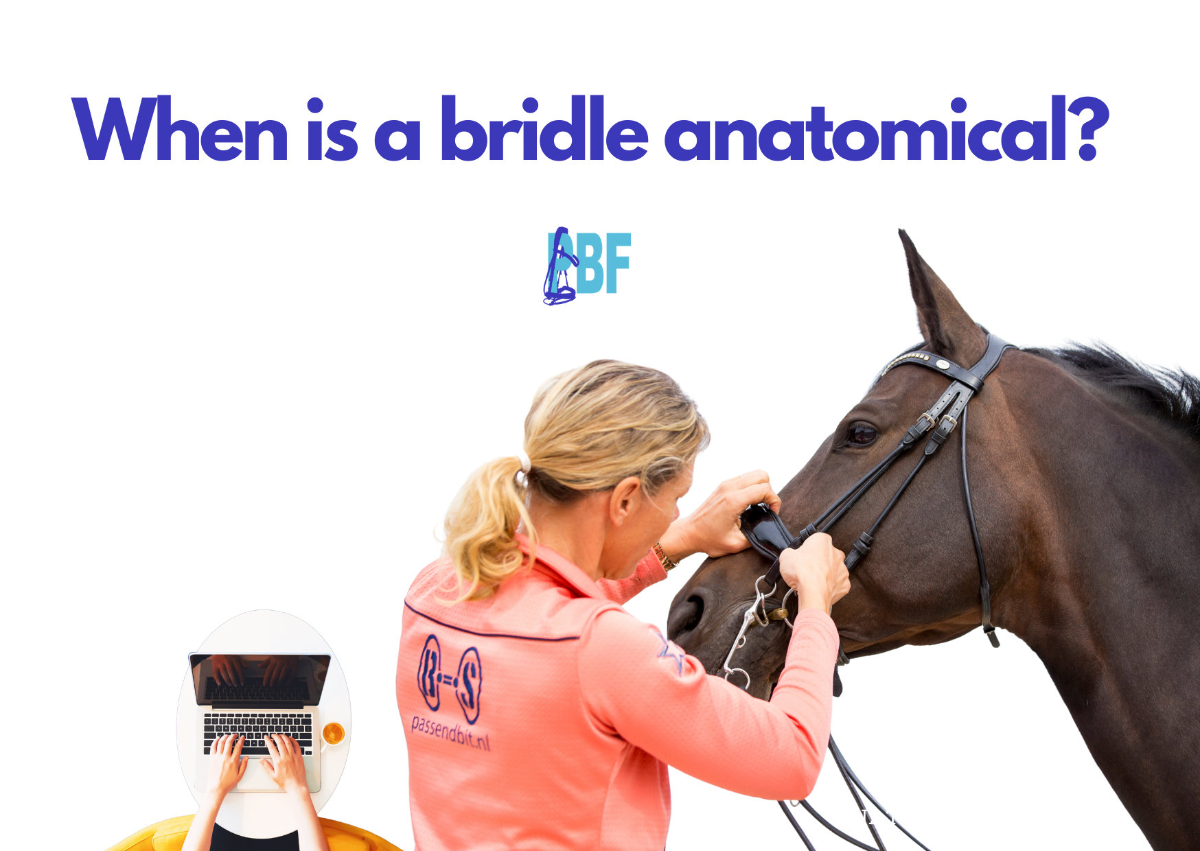 When is a bridle anatomical?