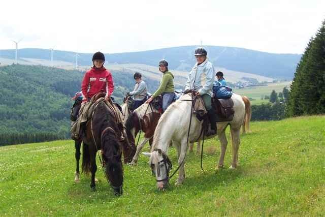 """Unsere bunte Meute vor der tschechischen """"Galoppwiese"""" Ferien 2008"""
