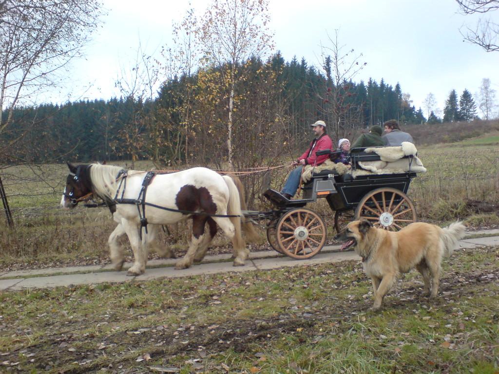 Kutscher und Gespann finden sich...2009