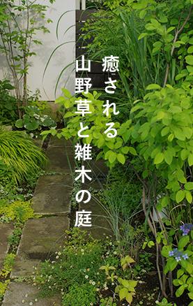 癒される山野草と雑木の庭