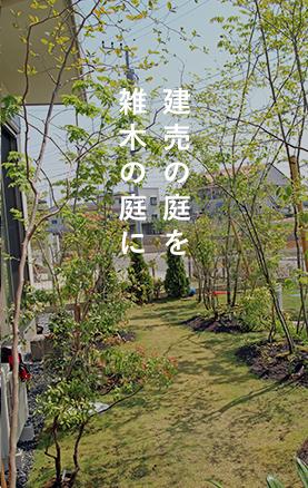 建売の庭を雑木の庭に
