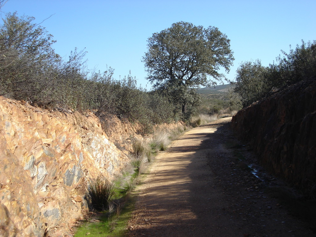 A former railway track, now an easy walking trail through a near empty countryside