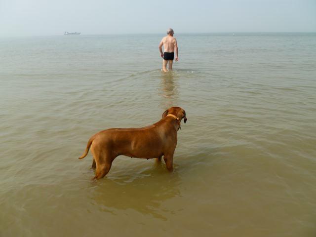 Marcel geet schwammen....