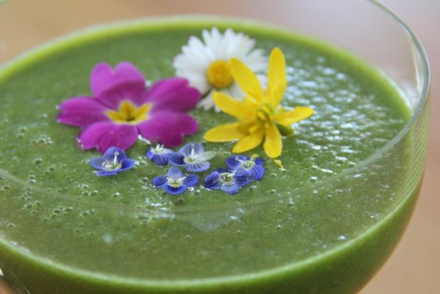 Wilder Grüner Smoothie = pure Energie aus der Natur