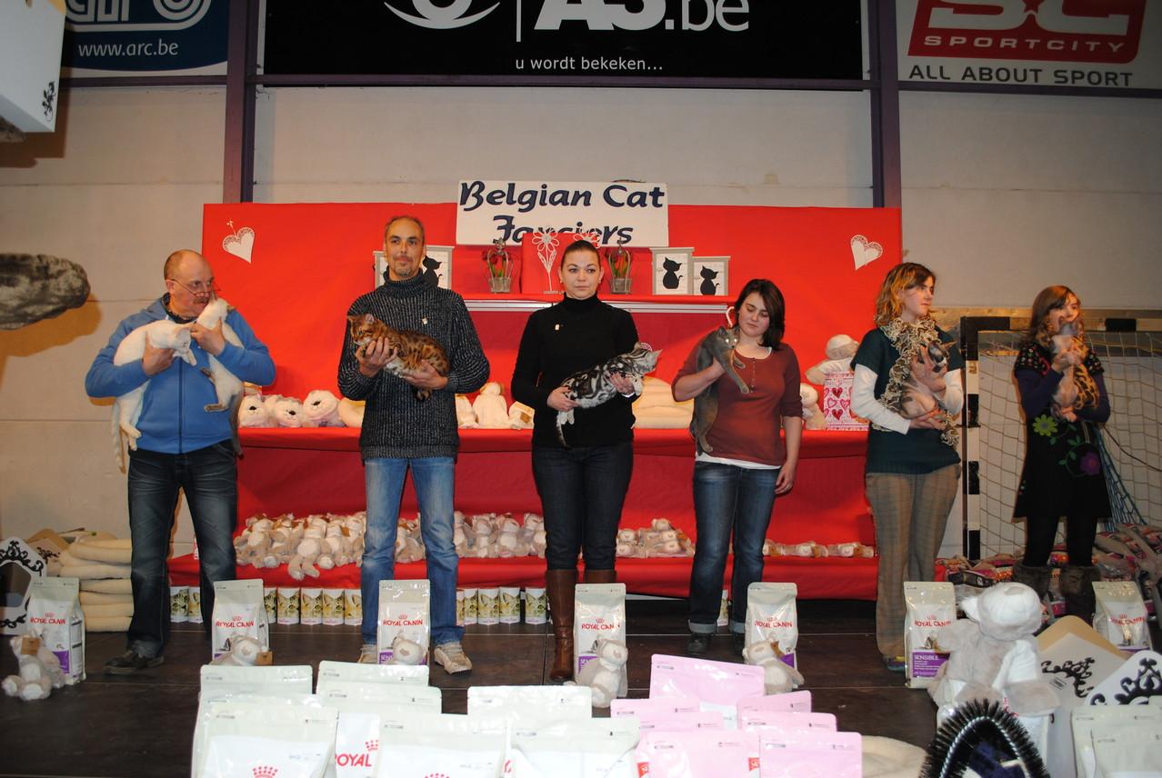 BCF Turnhout: EX 1 + SP + BIS