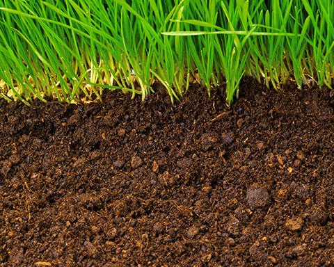 Rasenerde  Speziell aufbereitetes Substrat zur Herstellung der Rasentragschicht     Gartenerde  Speziell aufbereitetes Substrat  für Gartenbeete und Rabatte     Pflanzerde/Blumenerde  Speziell aufbereitetes Pflanzensubstrat     Golfplatz- und Sportplatzra