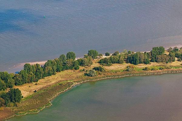 Der Schweinesand ist  7,5 KM lang, die bewaldete Insel im Dreiländereck von Hamburg, Niedersachsen und Schleswig Holstein und steht unter Naturschutz.