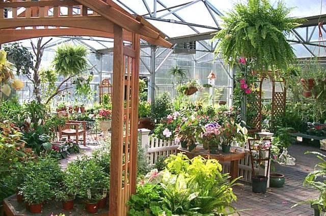Услуги садовника. Озеленение. Ландшафтный дизайн. Израиль.