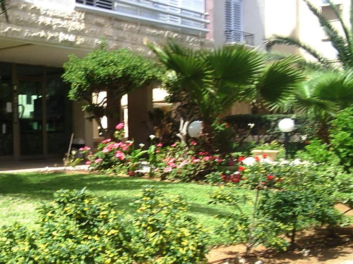 Услуги садовника. Озеленение. Ландшафтный дизайн. Израиль