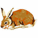 Kaninchen braun, 98x57 mm, 5918 Stiche