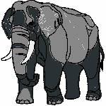 Elefant, 97x99 mm, 12834 Stiche