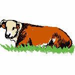 Kuh im Gras, 99x50 mm, 4896 Stiche