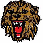Löwenkopf mit Zähnen, 96x97 mm, 9050 Stiche