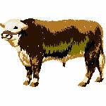 Bulle , 99x65 mm, 6167 Stiche