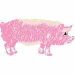 Schwein rosa, 95x48 mm, 4218 Stiche