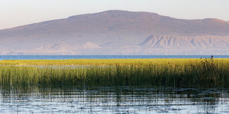 Lac Hawassa
